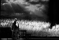 Развенчание Гамлета / Ростовский академический театр драмы им.М.Горького
